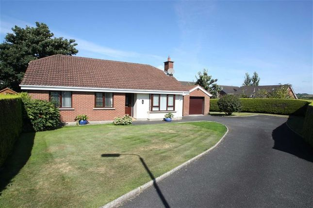 Thumbnail Detached bungalow to rent in Clanwilliams Court, Ballynahinch, Down