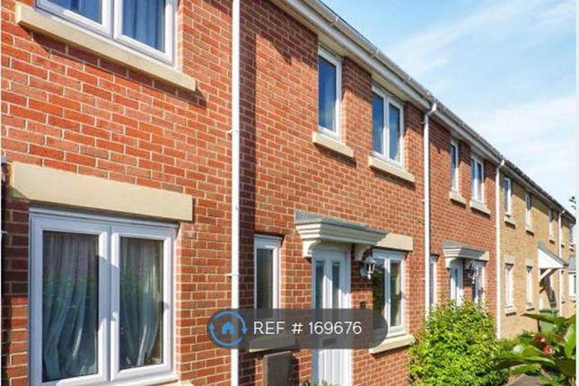 Thumbnail Terraced house to rent in Rudman Park, Chippenham
