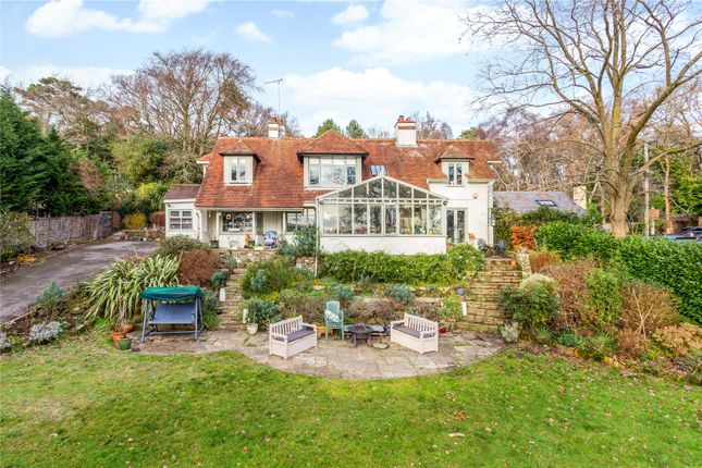 Thumbnail Detached house for sale in Sandy Lane, Fittleworth, Pulborough, West Sussex