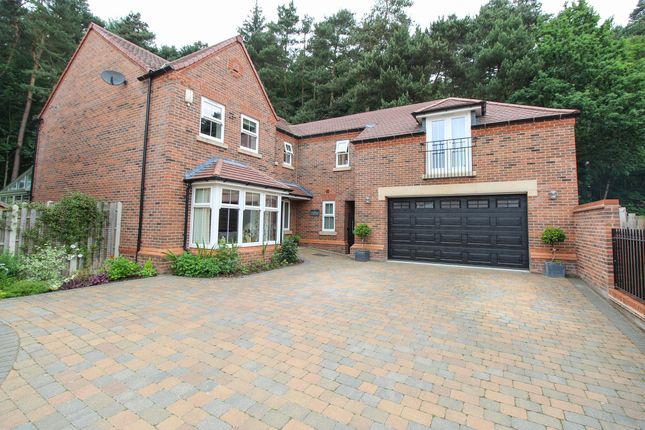 Thumbnail Detached house for sale in Treeneuk Gardens, Chesterfield