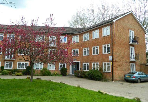 Pelham Court, Bishopric, Horsham RH12