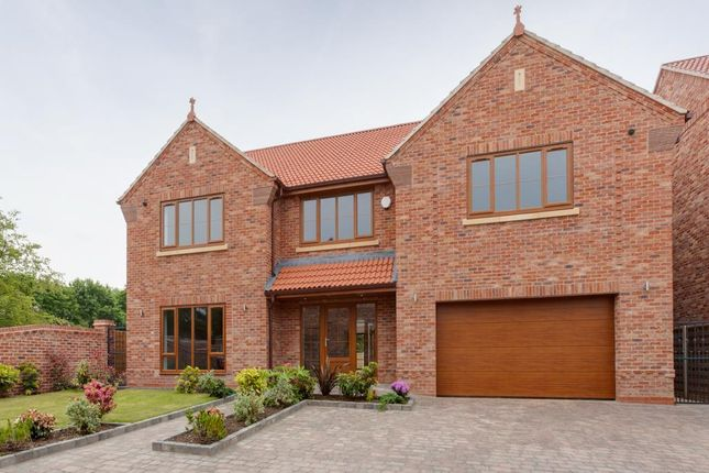Thumbnail Property for sale in Morthen Road, Wickersley, Sheffield