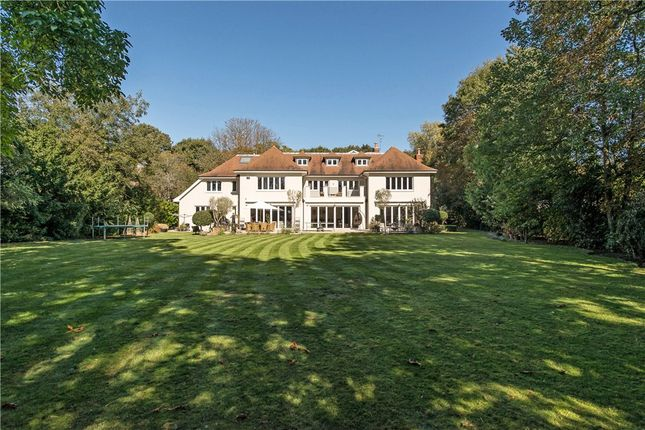 Thumbnail Detached house for sale in Church Road, Ham, Richmond, Surrey