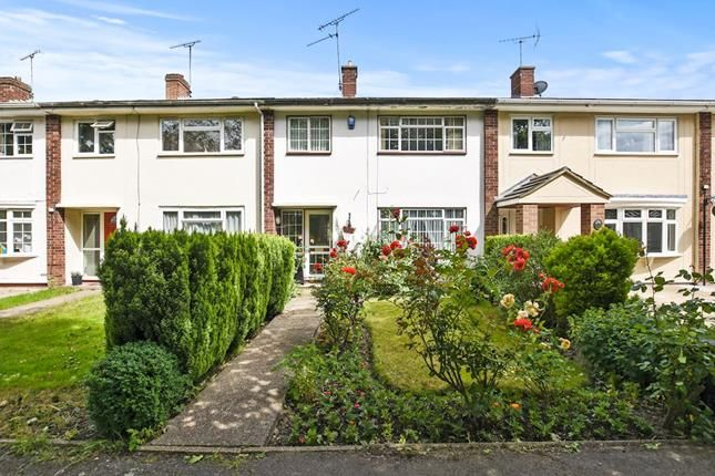 Thumbnail Terraced house for sale in Meadgate Avenue, Chelmsford