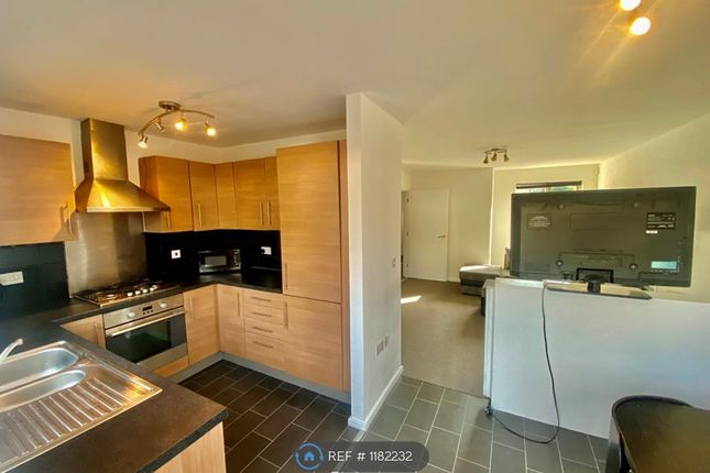 Thumbnail Semi-detached house to rent in Stuart Street, Manchester