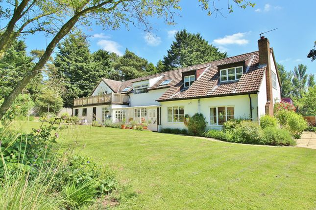 Thumbnail Detached house for sale in Buxton Road, Frettenham, Norwich