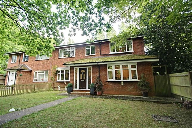 Thumbnail Semi-detached house for sale in Hemingford Road, Watford