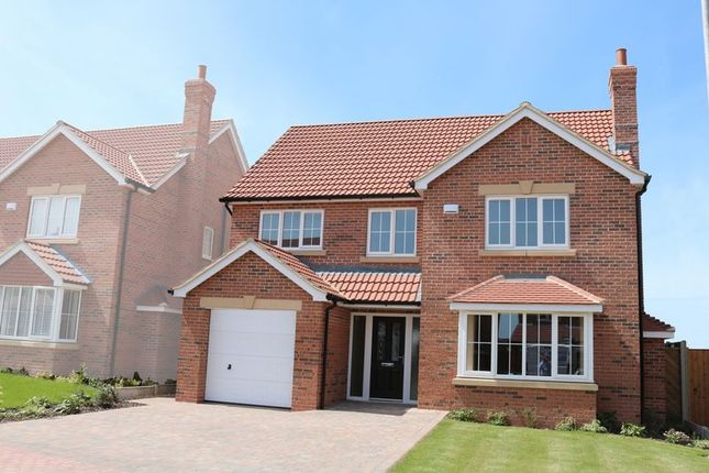 Thumbnail Detached house for sale in Plot 16, The Haddon, Willow Farm, Hibaldstow