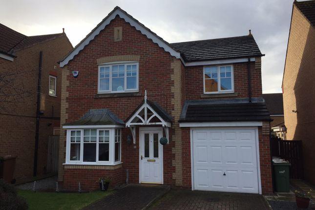 Thumbnail Detached house to rent in Hornbeam, Biddick Woods