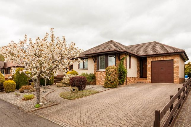 Thumbnail Bungalow for sale in William Place, Scone, Perth