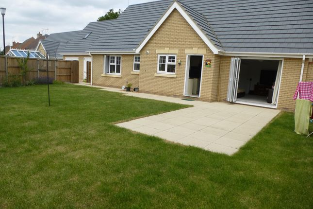 Thumbnail Detached bungalow to rent in Oxbow Crescent, March