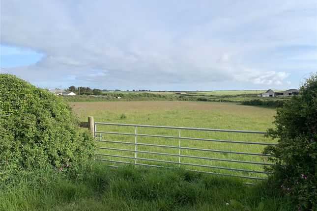 Picture No. 04 of Downhill, St Eval, Wadebridge, Cornwall PL27