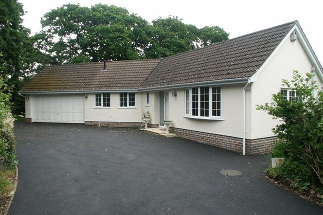 Thumbnail Detached bungalow for sale in Barton Common Road, New Milton