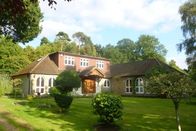 Thumbnail Detached house to rent in West Drive, Harrow