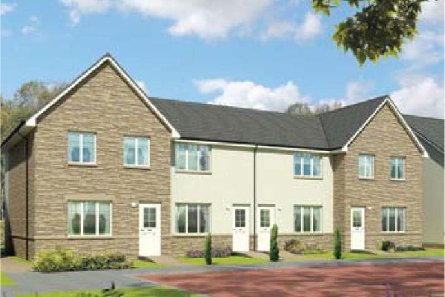 Thumbnail Terraced house for sale in Plot 20 Morven, Oaktree Gardens, Alloa Park, Alloa, Stirling