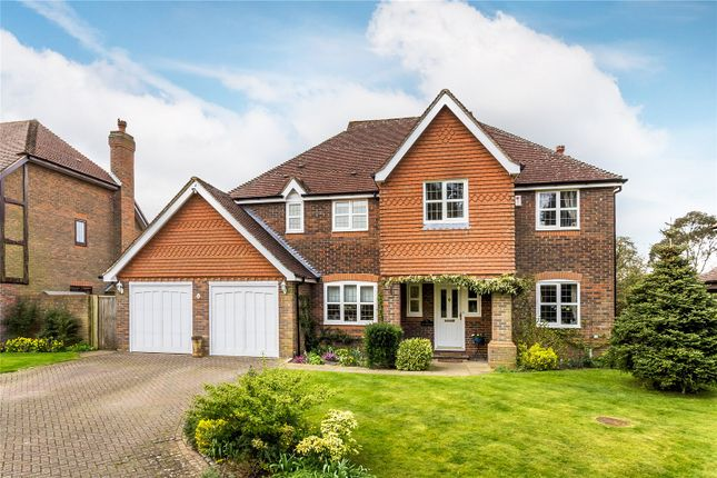 Thumbnail Detached house for sale in Lavender Close, Chaldon, Surrey
