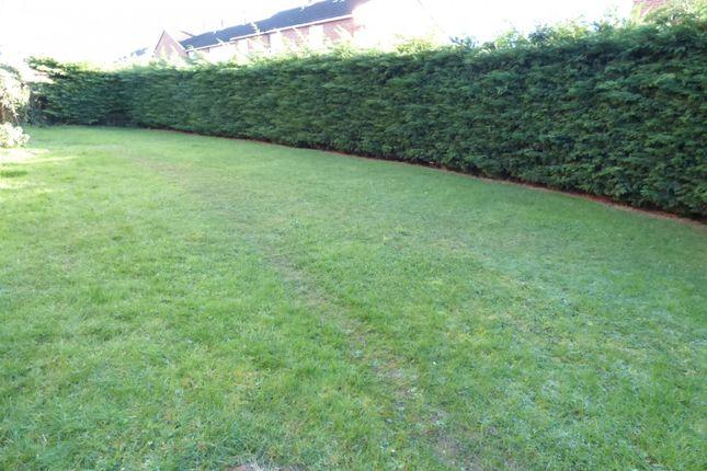 Garden of School Lane, Sprowston NR7