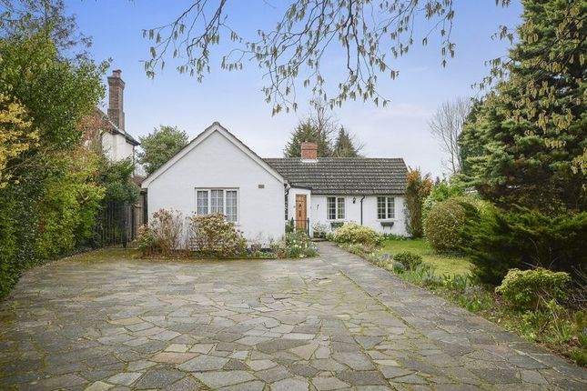 Thumbnail Detached bungalow for sale in Fir Tree Road, Banstead