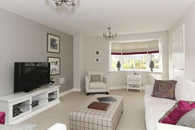 """Thumbnail Detached house for sale in """"Harrogate"""" at Blackthorn Crescent, Brixworth, Northampton"""