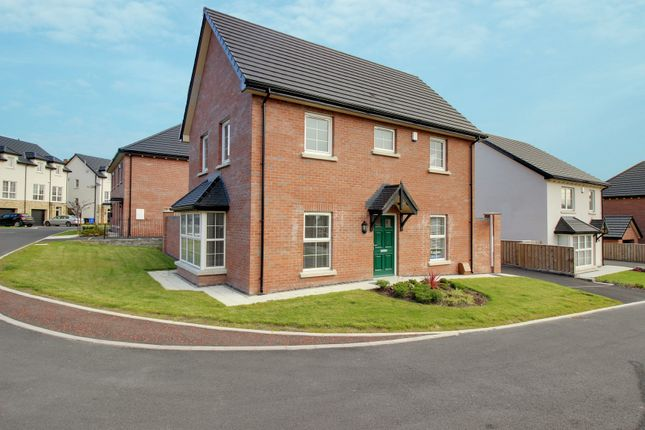 Thumbnail Detached house for sale in Blackwood Crescent, Newtownards