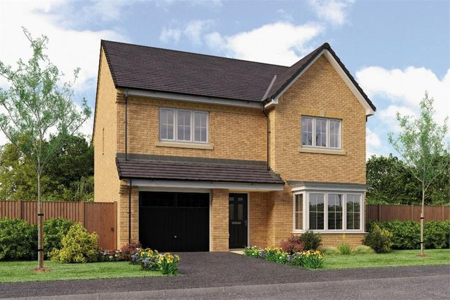 "Thumbnail Detached house for sale in ""Ryton"" at Backworth, Newcastle Upon Tyne"