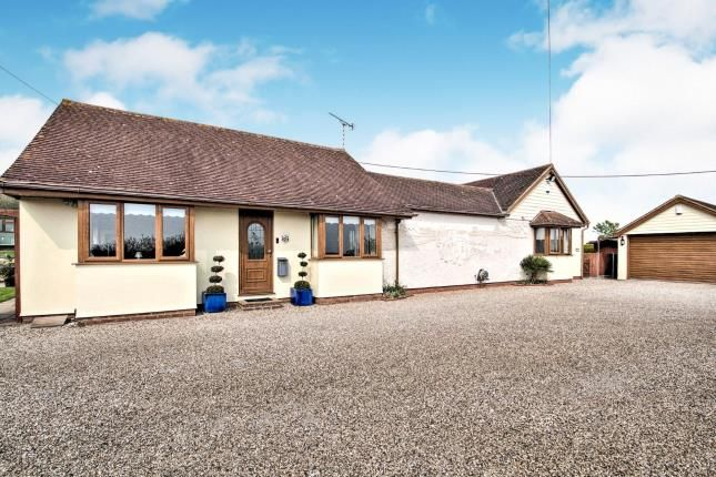 Thumbnail Bungalow for sale in Latchingdon, Chelmsford, Essex