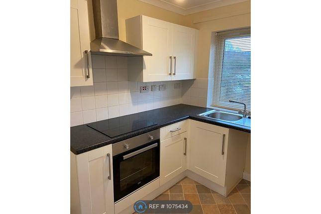 Thumbnail Flat to rent in Spring Court, Stapleford, Nottingham