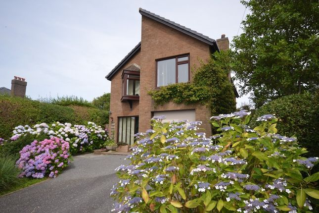 Thumbnail Detached house for sale in Clarach Road, Borth