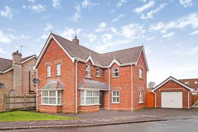 Thumbnail Detached house for sale in Brook Lodge, Ballinderry Lower, Lisburn