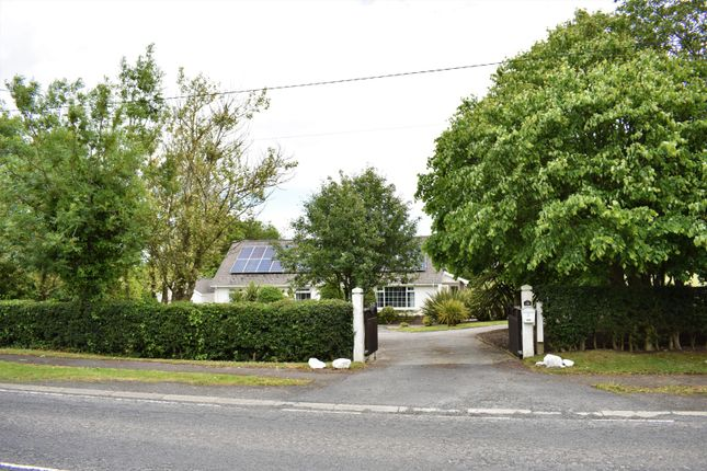 Thumbnail Detached house for sale in Ardglass Road, Downpatrick
