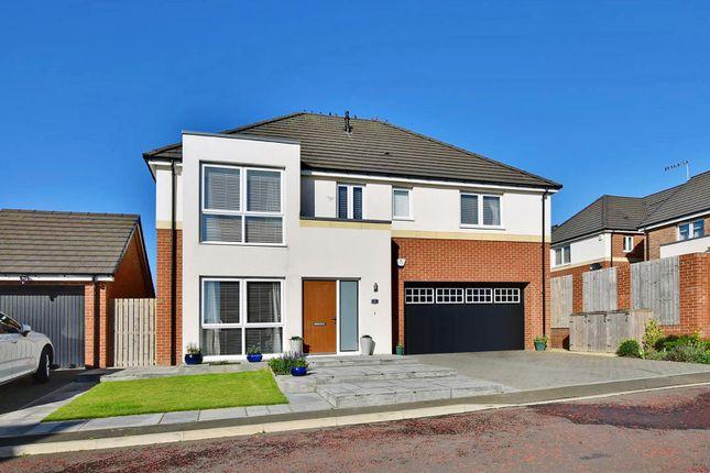 Thumbnail Detached house for sale in Range View, Whitburn, Sunderland