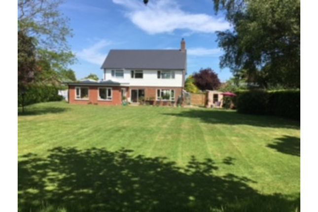 Thumbnail Detached house for sale in Hawksdown, Walmer