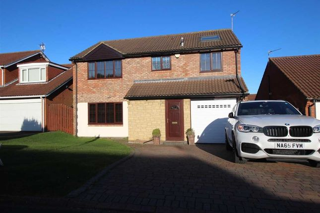 Thumbnail Detached house for sale in Whiteford Place, Netherfield Park, Seghill