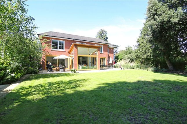 Thumbnail Detached house to rent in Currie Hill Close, Wimbledon