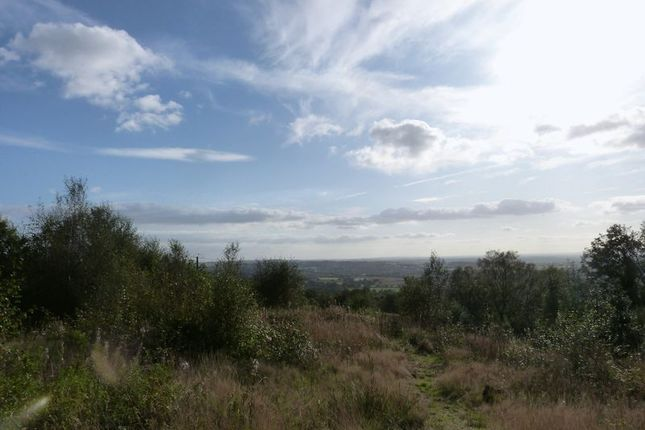 Photo 5 of Land Off Halls Road, Mow Cop ST7