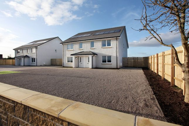 Thumbnail Semi-detached house for sale in Rosie View, Main Road, East Wemyss, Fife