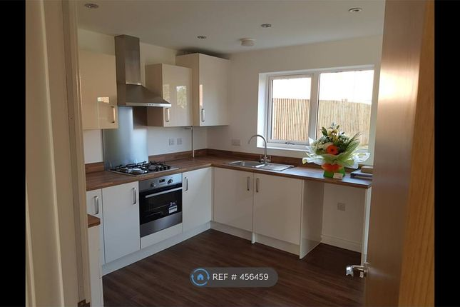 Thumbnail Room to rent in Maris Lane, Leicester