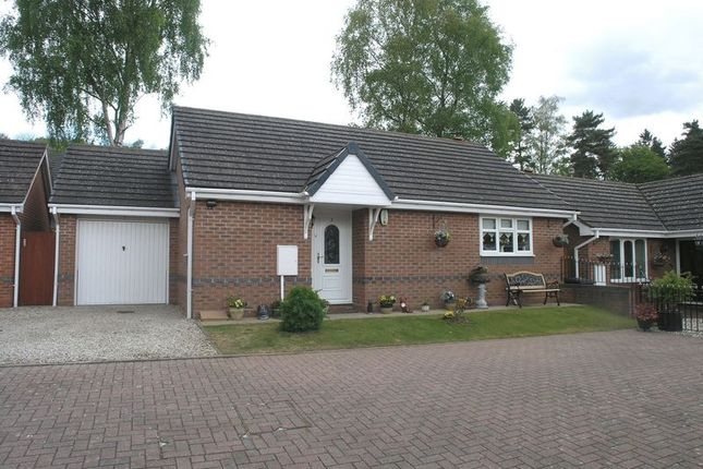 Thumbnail Detached bungalow for sale in Prestwood, The Oval, Covers Lane