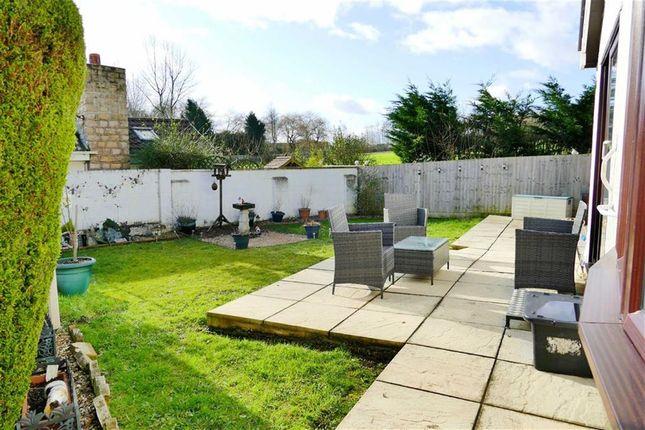 Thumbnail Detached bungalow for sale in Walter Sutton Close, Curzon Park, Calne