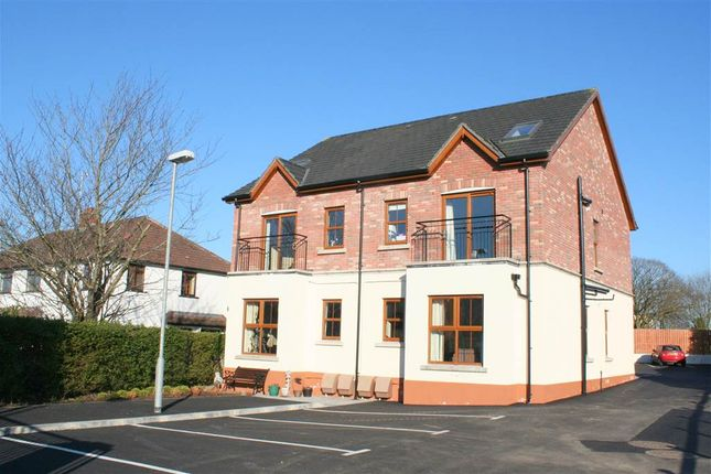 Thumbnail Flat to rent in 7, Laganville Court, Lisburn