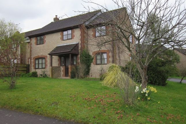Thumbnail Detached house to rent in Globe Orchard, Haselbury Plucknett, Crewkerne