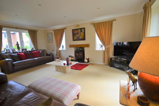 Thumbnail Detached house for sale in Wonston, Hazelbury Bryan, Sturminster Newton