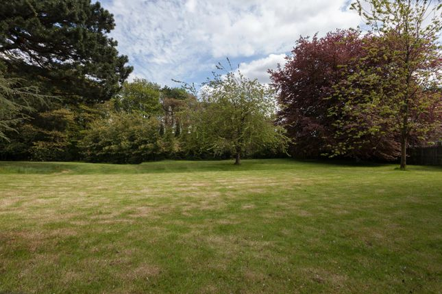 Thumbnail Land for sale in Ecclesall Road South, Sheffield