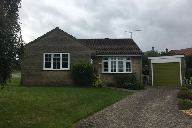 Thumbnail Bungalow for sale in Holly Grove, Crewkerne