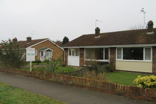 Thumbnail Semi-detached bungalow to rent in Orchard Lane, Blundeston