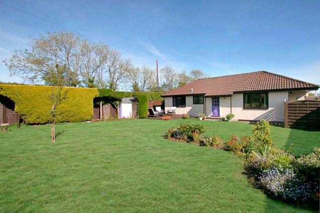Thumbnail Detached house for sale in West Stour, Gillingham