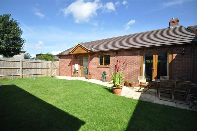Thumbnail Detached bungalow to rent in Lower Howsell Road, Malvern