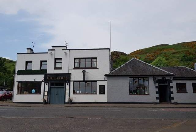Thumbnail Leisure/hospitality for sale in Main Street East, Menstrie