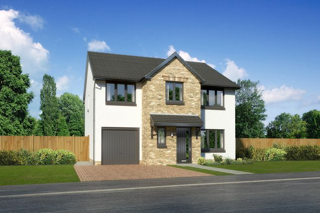 """Thumbnail Detached house for sale in """"Heddon"""" at Old Lang Stracht, Kingswells, Aberdeen"""