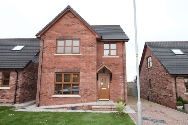 Thumbnail Detached house for sale in St. Andrews Drive, Ballyhalbert